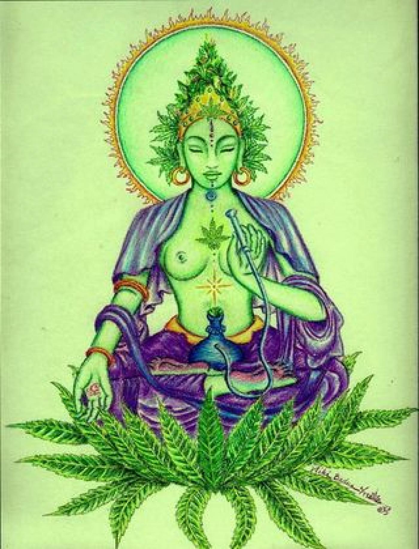 cropped-marijuan.png